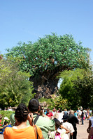 2009_04-16 Animal Kingdom-020.JPG
